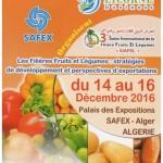 SAFEX2